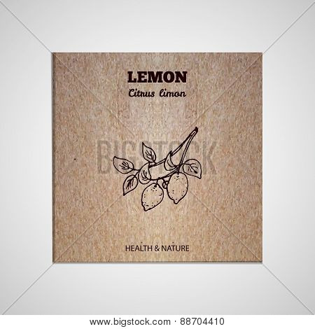Herbs and Spices Collection - Lemon