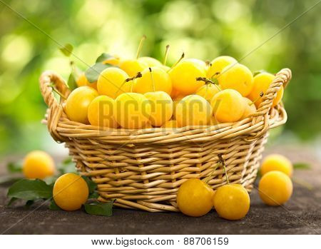 Yellow plums in the basket