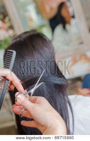 Brunette at the hair salon