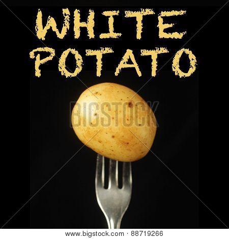 White potato on a fork on a black background