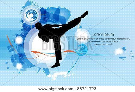 Sport. Karate illustartion
