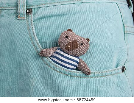 teddy bear in a pocket