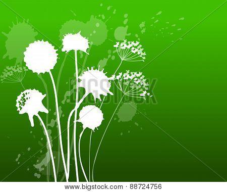 Rhododenron Green