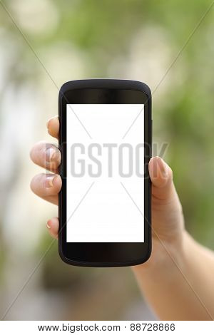 Woman Hand Showing A Blank Smart Phone Screen Display