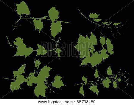 Illustration with vine silhouette on black background