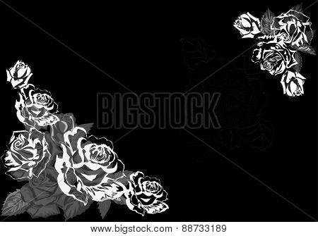 illustration with grey roses corners on black background