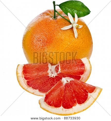 one citrus grapefruit  sliced detail close up isolated on white background