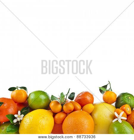 Assortment of Citrus fruits pile heap mix isolated on white background
