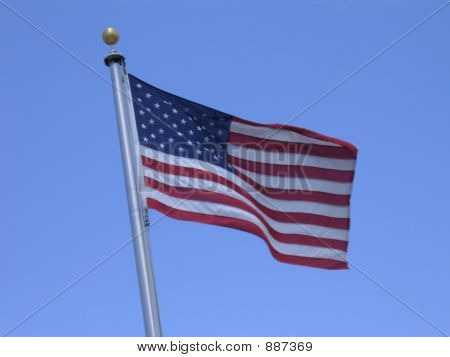 Flag On A Windy Day
