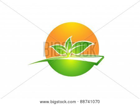 plant,ecology logo,circle plants symbol,sun and tree nature,leaf icon