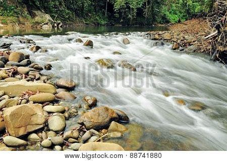Small Rapids In A Tropical Forest