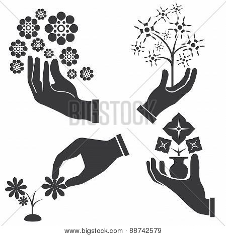 hand holding bouquets, flowers