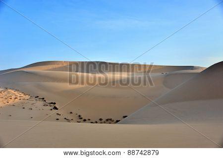sandy hills