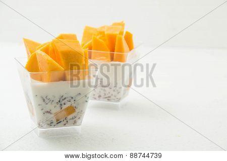 Mango Panna Cotta Isolated
