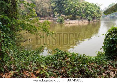 People Are Resting And Feeding Fish Beside The Lake