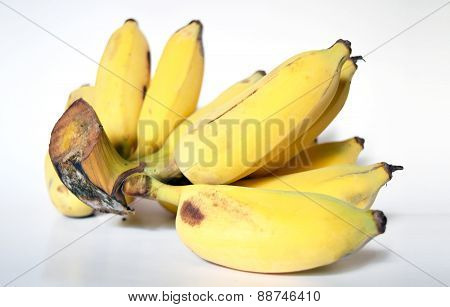 Fresh Cultivated Banana Ripe products,Thailand