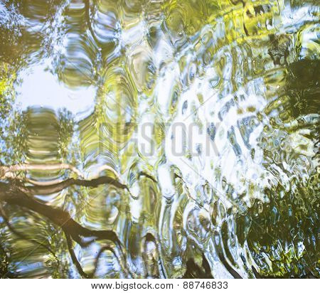 Water Surface With Reflection Of The Green Trees
