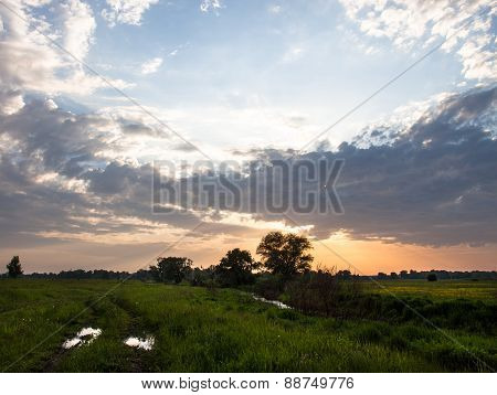 Summer Landscape With Dirt Road