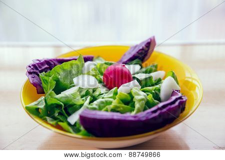 Fresh salad with radishes and lettuce