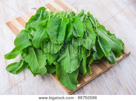 Fresh Sorrel On A Kitchen Board