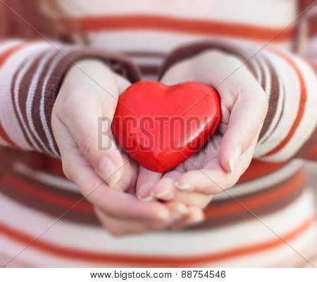 Red Heart Shape In Hands