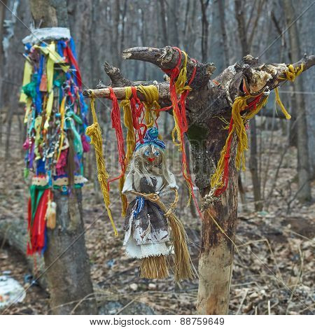 Offerings To The Pagan Gods In The Forest.