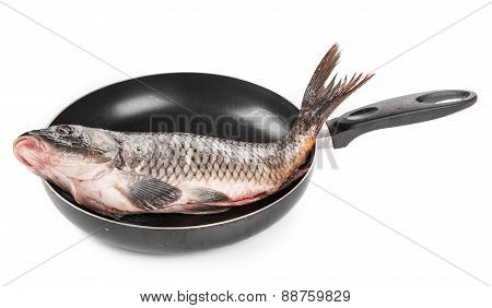 pan with fresh carp