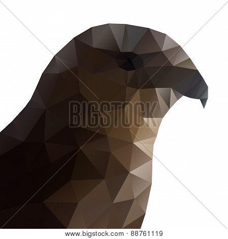 Hawk Eagle Head Polygonal Vector Illustration.