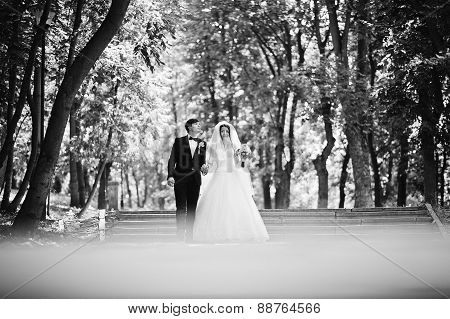 Young Beautiful Wedding Couple At The Park