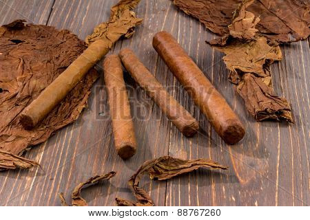 leaves of tobacco and finished cigars are adjacent.