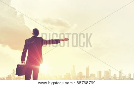 Rear view of businessman looking at sunset above city