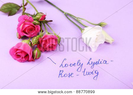 Beautiful rosy twigs with inscription on paper background