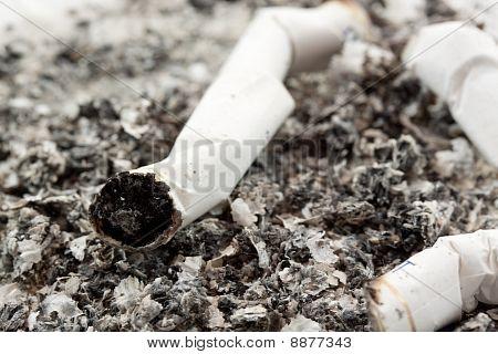 cigarette ash macro