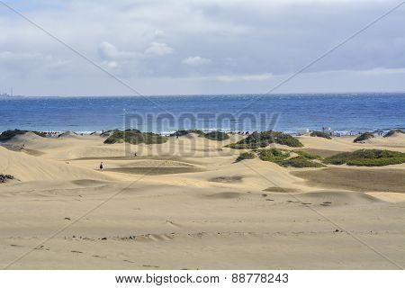 Dunes Of Maspalomas In Gran Canaria, Canary Islands, Spain