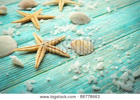 Sea stars and shells on wooden background