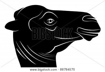 Camel Head Silhouette, Vector Illustration