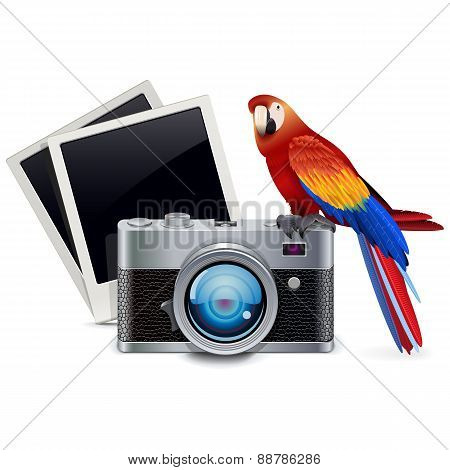 Vector Photography Concept