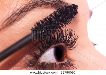 Woman Eye With Mascara