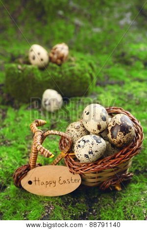 Bird eggs in decorative basket on green grass background