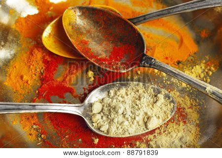 Different spices on silver tray with spoons, macro view