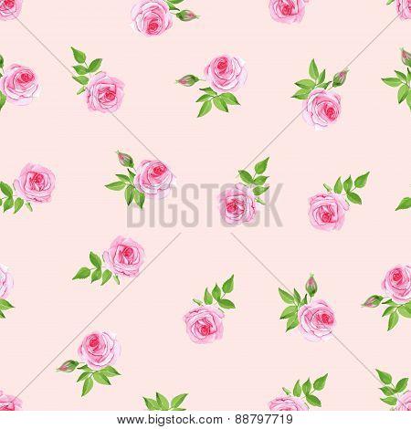 Delicate  Roses Watercolor Seamless Vector Print