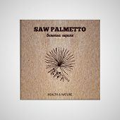 foto of saw-palmetto  - Herbs and Spices Collection  - JPG