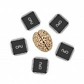 picture of microprocessor  - Human brain and microprocessor - JPG