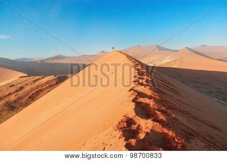 Landscape of Dead Vlei, Sossusvlei, Namib desert. Namibia, South Africa