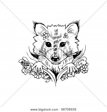 Abstract graphic raccoon, print.