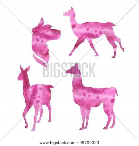 Vector watercolor silhouettes of a lama.