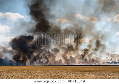 harvested field catching fire