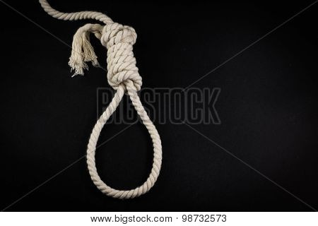 Single Hangmans Noose In White Rope On Black