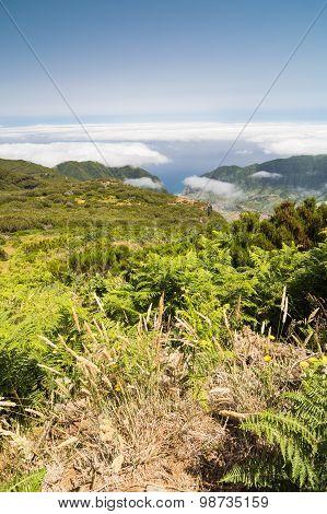 Plateau Paul Da Serra In Madeira Island