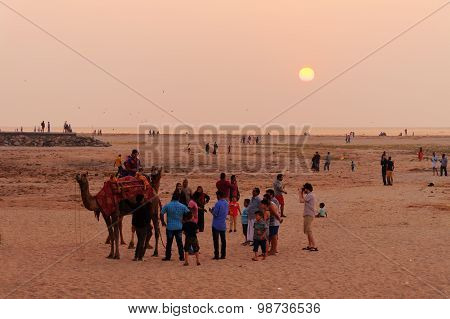 Indian Local Tourists With A Camel On The Beach At Sunset